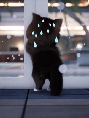 病気になったエミを待っているキティに感動された!#猫 #猫の恩返し #なんでもキャラ化 #癒しの子ども #キティ tiktok