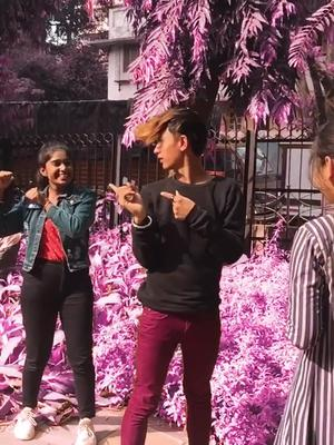 New tiktok update if u share this video then tiktok asking u reason why u share this #tik_tok @tiktok @tiktok_india #uralex of new tiktok video