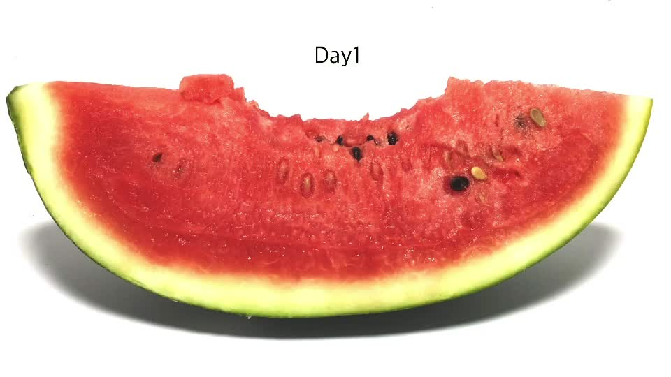 #watermelon #timelapse #experiment #entertainment tiktok