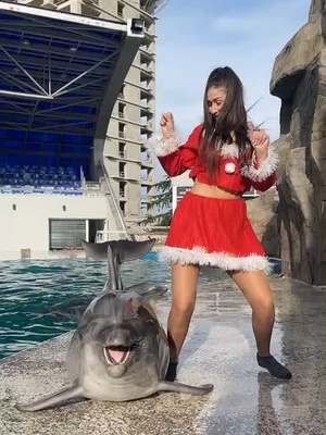 late dor the trend but ohh well 😅 happy new year 🎄#пэт_отдыхает #challange #newyear #merrychristmas #dolphin#dance instagram:anna-chulkova